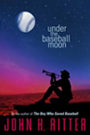 Under the Baseball Moon bookcover, a softball book for teens, a music book for teens